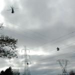 Crosswires
