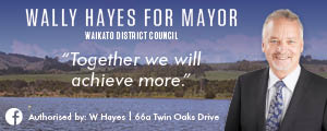 Wally Hayes for Mayor website