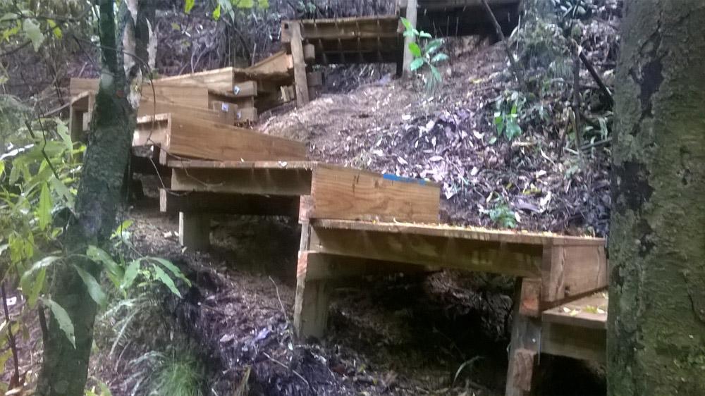 Pukemokemoke Reserve