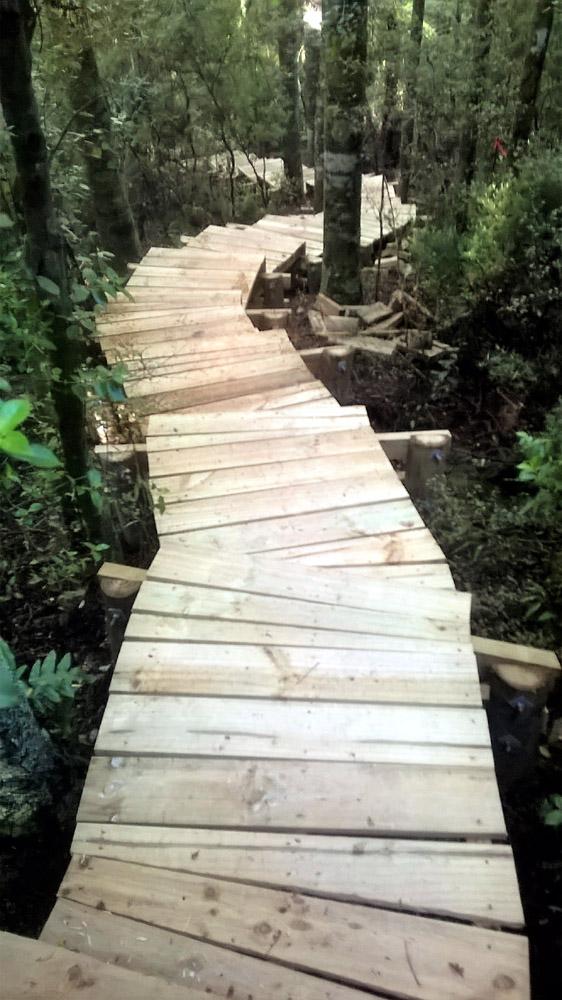 Pukemokemoke walkway